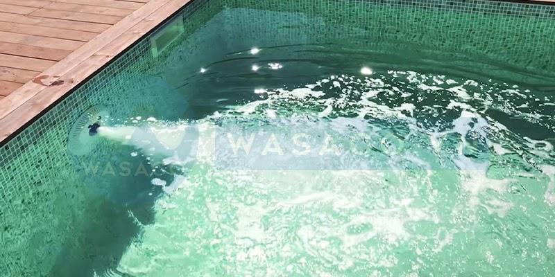 Đặc điểm đầu bơi ngược dòng EM0055