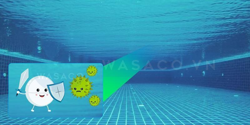 Diệt rêu tảo trong nước hồ bơi